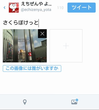 sakura_pocket10