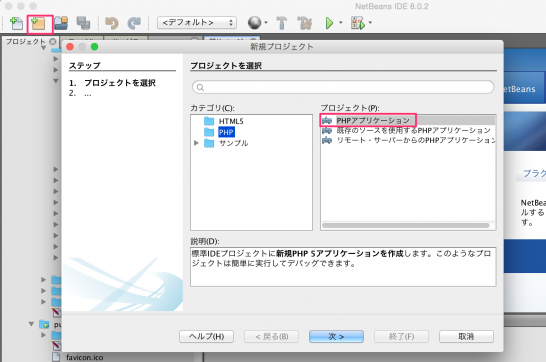 netbeans_server3